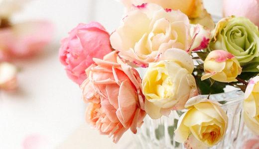 ばらの年賀状無料素材。淡ピンク・オレンジ・ローズ色。春のご挨拶カードにも。