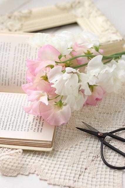 単発1day デジカメ講座 (春の花 講師撮影サンプル)