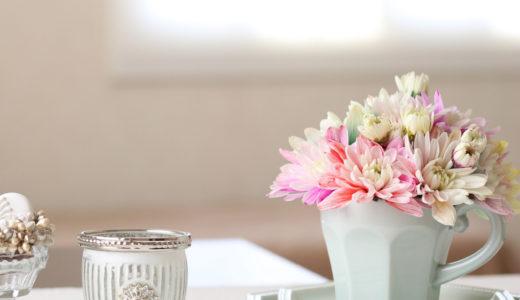 そとは寒いから、おうちで春の花を撮って遊ぼう!プチ撮影会