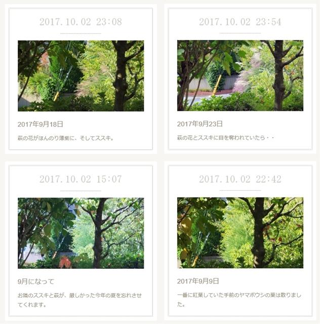 アメーバオウンドホームページ作成レッスン受講生作品:お気に入りの窓から